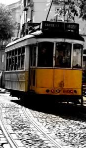tram-535946